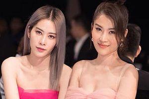 Chưa biết đóng góp gì cho showbiz Việt nhưng chị em Nam Anh - Nam Em là 'quán quân' của những cuộc tình đơn phương