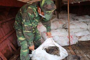 Đồn Biên phòng Trà Cổ: Thu giữ, tiêu hủy gần 16 tấn thực phẩm bẩn