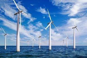 PVN: Phát triển năng lượng tái tạo là một trong những nhiệm vụ trọng tâm