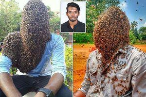 Người đàn ông lập kỷ lục thế giới khi để hàng chục nghìn con ong bám trên mặt