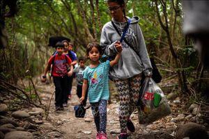 Liên hợp quốc lo ngại việc đi học của hàng triệu trẻ em Mỹ Latinh