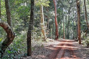 Giữ Vườn Quốc gia Cát Tiên