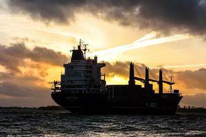 Không có người mua, hàng loạt tàu dầu Venezuela kẹt giữa biển