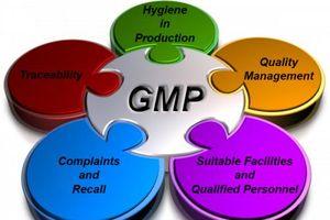Cập nhật danh sách cơ sở sản xuất thuốc, nguyên liệu làm thuốc tại Việt Nam đạt chuẩn GMP