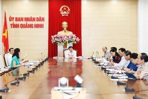Chủ tịch UBND tỉnh nghe và cho ý kiến chủ trương đầu tư một số dự án