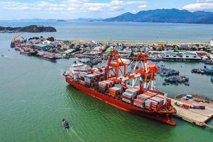 Cảng Quy Nhơn bị phạt 100 triệu đồng do lỗi công bố thông tin