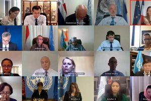 Họp trực tuyến Hội đồng Bảo an: Việt Nam kêu gọi thúc đẩy triển khai tiến trình hòa bình liên quan đến Afghanistan