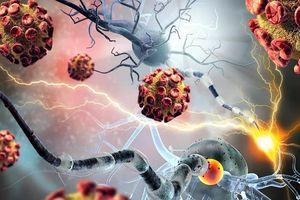 Hy vọng mới cho bệnh nhân ung thư: 'Cứu tinh' từ hạt nano?