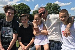 12 câu nói càng đọc càng thấm về việc nuôi dạy con của David Beckham
