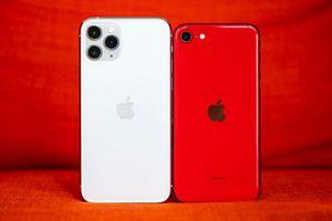 So sánh iPhone SE 2020 và iPhone 11 Pro: Không chỉ khác biệt về phân khúc