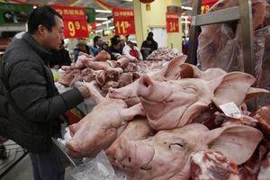 Giá thịt lợn ở Trung Quốc tiếp tục giảm sâu
