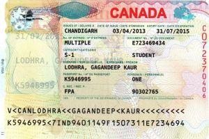Chương trình thị thực của Canada 'hút' lao động nước ngoài vào mảng công nghệ