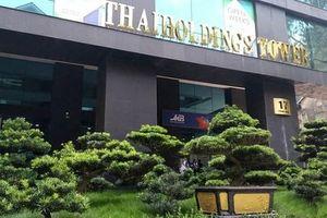 Dự chi 3.300 mua cổ phần, Thaiholdings muốn trở thành công ty mẹ của Thaigoup