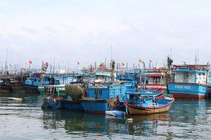 Phối hợp kiểm soát tàu cá có nguy cơ vi phạm khai thác IUU