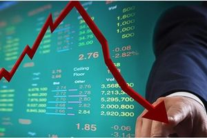 Chứng khoán Việt Nam: Thị trường đảo chiều, đâu là giải pháp cho nhà đầu tư cá nhân?