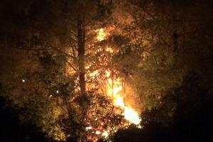 Hà Tĩnh huy động hàng trăm người chặn cháy rừng lan rộng