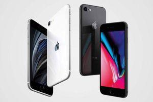 Nên mua iPhone SE 2020 hay iPhone 8?