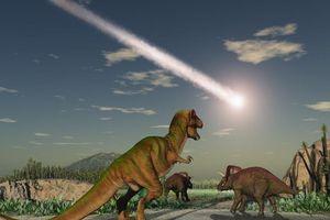 Nguyên nhân khiến khủng long tuyệt chủng đã được khẳng định