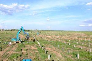Hưng Hải tăng tốc các dự án điện mặt trời tại Bình Phước