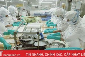 Doanh nghiệp xuất nhập khẩu thủy sản Hà Tĩnh đặt mục tiêu doanh thu 131 tỷ đồng