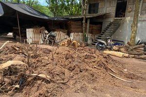 Phú Thọ: Thuế cao, nhiều hộ cá thể kinh doanh, sản xuất dăm gỗ phải dừng sản xuất