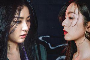 Fan 'khó kiểm soát nhịp tim' trước tạo hình của Seulgi và Irene được SM tung trong đêm: Có nhất thiết phải đẹp đến vậy không?