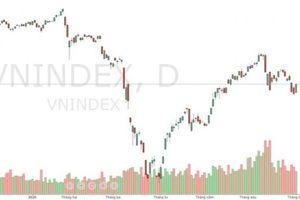 Góc nhìn chứng khoán: Rực rỡ bất ngờ, VN-Index 'vá đáy' 830
