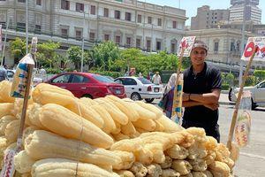 Cuộc sống mưu sinh trong mùa dịch Covid-19 ở Ai Cập
