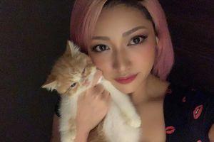 Nguyên nhân cái chết oan khuất của nữ đô vật Nhật Bản Hana Kimura