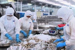 Tháo gỡ vướng mắc trong việc áp thuế đối với thủy sản 'chế biến' và 'sơ chế'