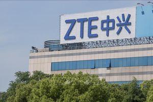 Mỹ cấm thiết bị của Huawei, ZTE