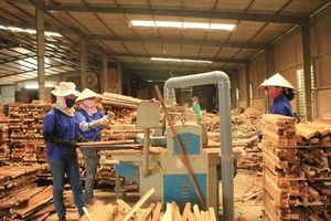 Đã đến lúc doanh nghiệp gỗ phải thay đổi cách vận hành