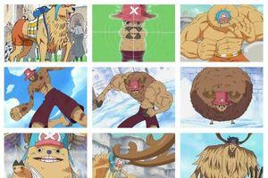 One Piece: Trái ác quỷ hệ Zoan dạng thức tỉnh giúp người dùng đạt được sức mạnh gì?