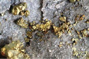 Ai Cập phát hiện mỏ vàng khổng lồ ở sa mạc với trữ lượng khoảng 35 tấn