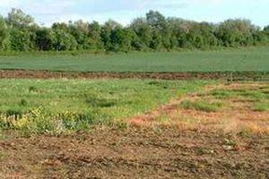 Phê duyệt Kế hoạch định giá đất cụ thể trên địa bàn tỉnh Khánh Hòa năm 2020