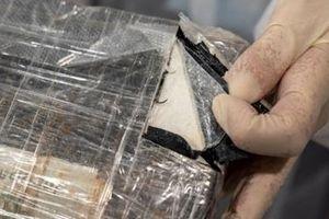 Núp bóng thiết bị chống COVID-19 để buôn ma túy