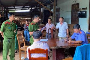 Chủ doanh nghiệp trữ 200m3 gỗ lậu ở Gia Lai khai gì?