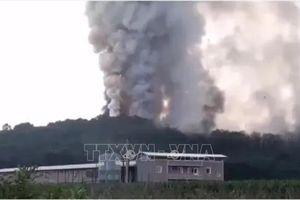 Gia tăng số nạn nhân trong vụ nổ nhà máy sản xuất pháo hoa ở Thổ Nhĩ Kỳ