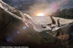 'Nghĩa địa hóa thạch' tiết lộ thảm kịch kinh hoàng 66 triệu năm trước