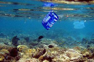 Năm 2050, rác thải nhựa sẽ nhiều hơn cá đại dương