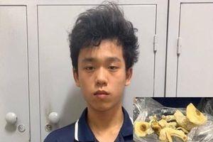 Tự trồng 'nấm thức thần' để bán, nam sinh viên Đại học Bách Khoa Hà Nội bị khởi tố