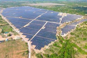 Điện mặt trời '1 vốn 7 lời' qua thương vụ của Tập đoàn Hưng Hải