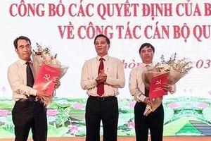 Điều chuyển Chủ tịch quận Hồng Bàng bị kỷ luật về làm Phó Giám đốc Sở