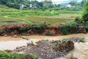 Sớm khắc phục sạt lở tại huyện Ba Bể