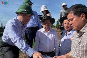 Phó Chủ tịch Quốc hội làm việc với tỉnh Thừa Thiên-Huế