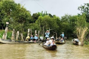 Gần 9.000 lượt khách quốc tế đến Việt Nam trong tháng 6
