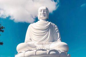 Bức tượng Phật ngoài trời lớn nhất Việt Nam ở đâu?