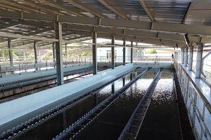Dawaco đề nghị được tăng giá bán nước sạch