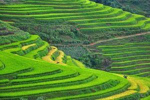 Sa Pa và Ninh Bình 'vào Top' điểm hấp dẫn nhất cần khám phá tại châu Á