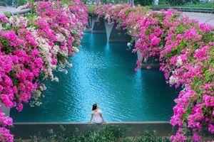 Thêm 'thánh địa check-in' hoa giấy auto có ảnh đẹp tại Hà thành